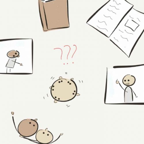 11 tips Om zin van onzin te scheiden.